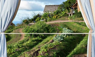 Saint Kitts and Nevis Belle Mont Farm St Kitts