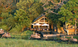 http://hotelsandstyle.com/wp-content/uploads/ngg_featured/africa-abu-camp-4-306x185.jpg